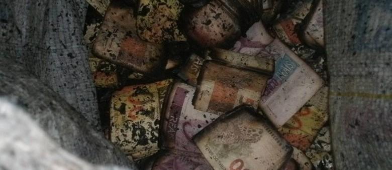 Parte do dinheiro encontrado escondido em carro que pegou fogo na Via Dutra - PRF / Divulgação